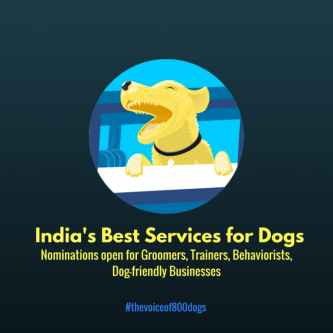 INDIA'S BEST DOG TRAINERS, GROOMERS, DOG-FRIENDLY BUSINESSES-Pets-Pet Supplies-Bangalore
