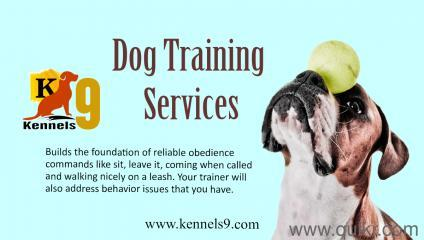 Dog Training Services In Sainikpuri-Pets-Pet Services-Hyderabad