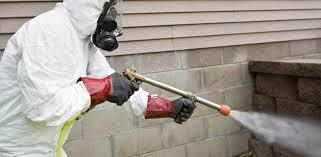 Best Termite Treatment in Hyderabad-Pets-Pet Services-Hyderabad