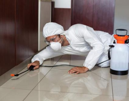 ALL TYPES OF PEST CONTROL SERVICE iN GURGAON-Services-Home Services-Karnal