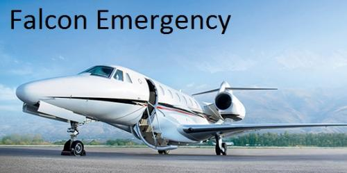 Falcon Emergency Air Ambulance Services in Shimla at Low Cost-Services-Health & Beauty Services-Health-Shimla