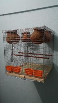 Mesh cages of various size-Pets-Pet Supplies-Chennai