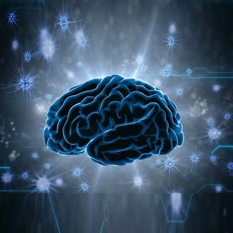 Neurology Clinical Services in Hyderabad-Services-Health & Beauty Services-Health-Hyderabad