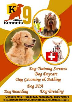 Dog Boarding Services In Sainikpuri-Pets-Pet Services-Hyderabad