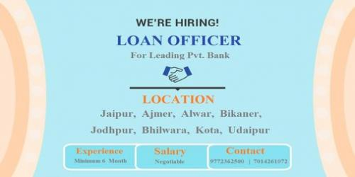 Hiring Relationship Officer (Loan department) for Pvt. Bank-Jobs-Sales & Distribution-Jaipur
