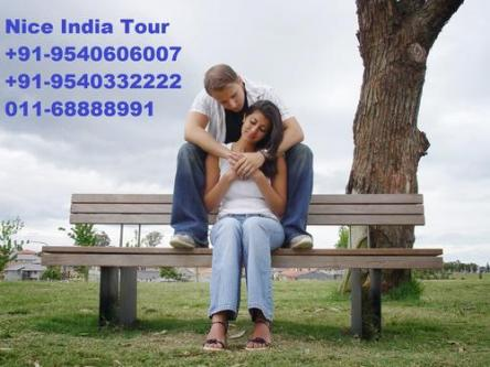 Nice Holiday Discount Shimla Manali Tour Package-Services-Travel Services-Goa