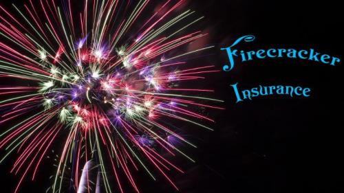 Buy Best Firecracker Insurance with Bajaj Finserv at Diwali-Services-Insurance & Financial Services-Rajpur Sonarpur