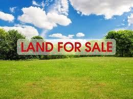 Need Real Estate Agents for Marketing9339265606-Services-Real Estate Services-Rajpur Sonarpur