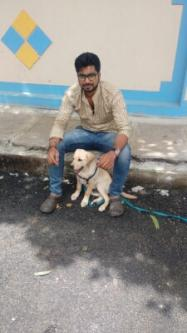 Certified trainer (5year's experience) in our area regenable pri-Pets-Dog Training-Bangalore