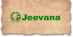 Best Ayurvedic Massage Center in Pune - Jeevana-Services-Health & Beauty Services-Health-Pune