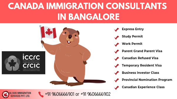 Canada Immigration from India – Novusimmigration.com-Services-Travel Services-Bangalore
