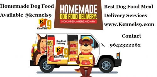 Dog Food Services In Sainkpuri-Pets-Pet Services-Hyderabad