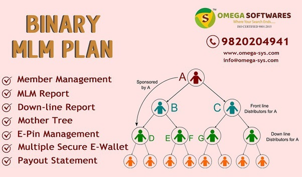 Affordable Binary MLM Plan in Mumbai at best cost -Services-Web Services-Mumbai