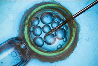 IVF Center in India-Services-Health & Beauty Services-Health-Hyderabad