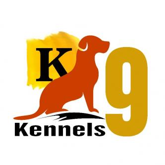 Kennels9 - Dog Grooming, Daycare, Boarding, Training-Pets-Pet Services-Hyderabad