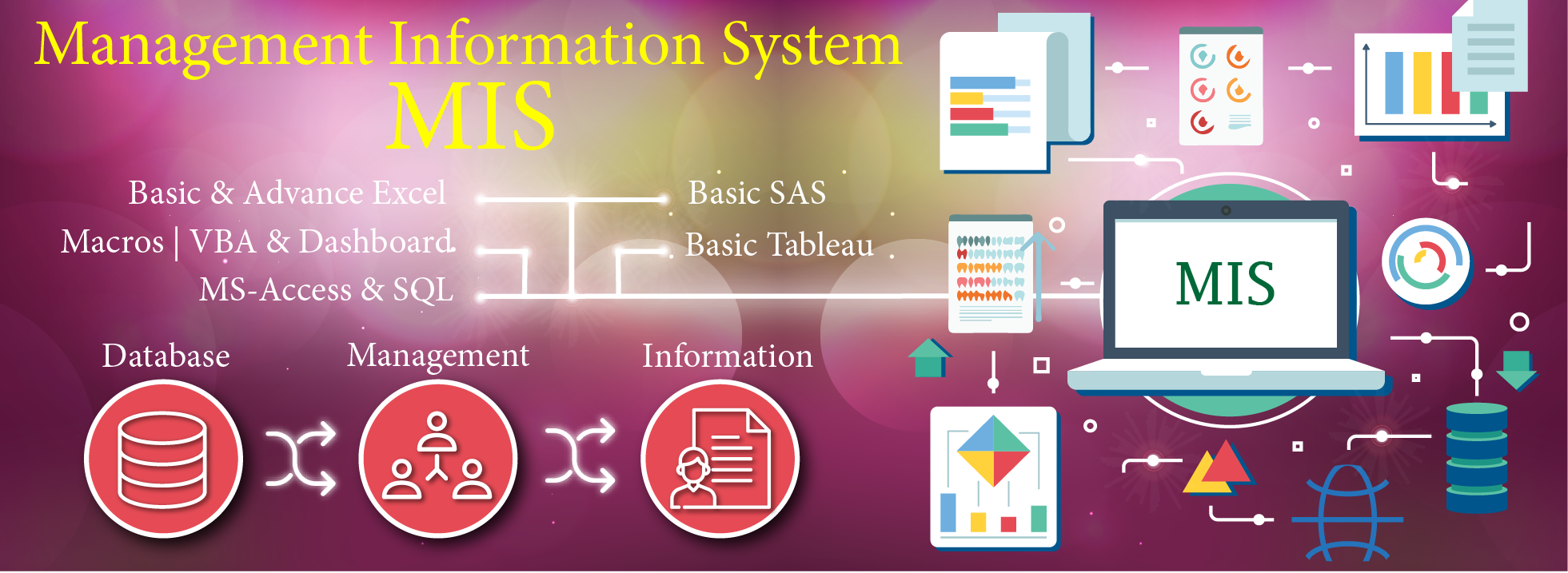 Attend Best MIS Training Course in Gurgaon-Classes-Other Classes-Gurgaon