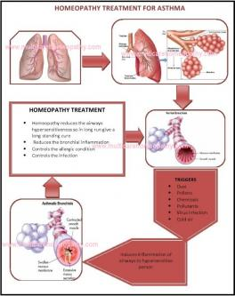 6 Best Homeopathic Medicines for ASTHMA Treatment-Jobs-Health Care-Bhubaneswar