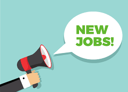 Vacancy for Account Assistant in Shopclues-84477264.01-Jobs-Customer Service & Call Centre-Pune