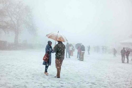 Short Manali Tour Packages By Volvo & Car Book Now-Services-Travel Services-Aizawl