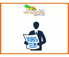 Turn Your Dream Into Reality And Earn Huge Income By Promoting O-Jobs-Multi Level Marketing-Ajmer
