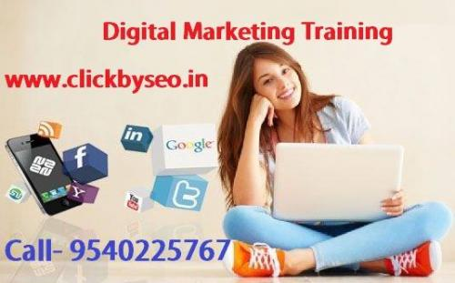 Digital Marketing SEO Training Institute in Patna, Bihar-Jobs-Education & Training-Patna