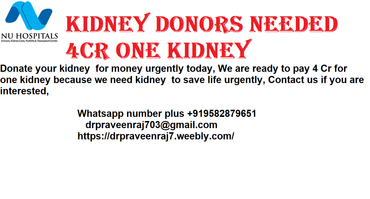 SELL ONE KIDNEY FOR 4CR-Services-Insurance & Financial Services-Bangalore