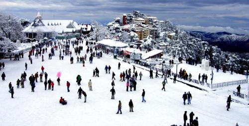 himachal dream tour offer the most affordable cost-Services-Travel Services-Shimla