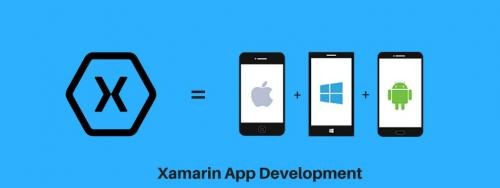 Hire Xamarin Developer for Cross platform Mobile App Development-Services-Web Services-Ahmedabad
