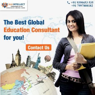 Best global education consultant | V&U Intellect-Services-Career & HR Services-Hyderabad