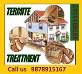 Termite Control in Chandigarh , Call 9878915167-Community-Household Help-Chandigarh