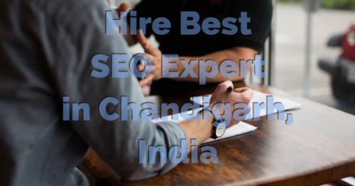 SEO Expert Chandigarh-Services-Web Services-Chandigarh