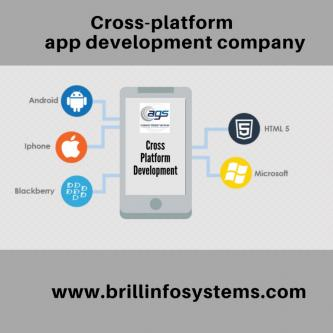 Cross-Platform App Development Company | Brill Infosystems-Services-Web Services-Chandigarh