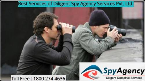 Private detective agency Shimla-Services-Legal Services-Shimla