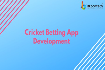 Looking for cricket betting app development in Gujarat-Services-Legal Services-Ahmedabad