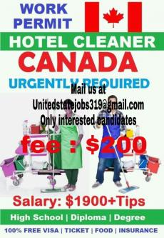 urgently required hotel cleaner in canada-Jobs-Other Jobs-Hyderabad