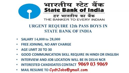 Urgent require 12th pass Boys for State Bank Of India**Free Join-Jobs-Bankers & Brokers-Delhi