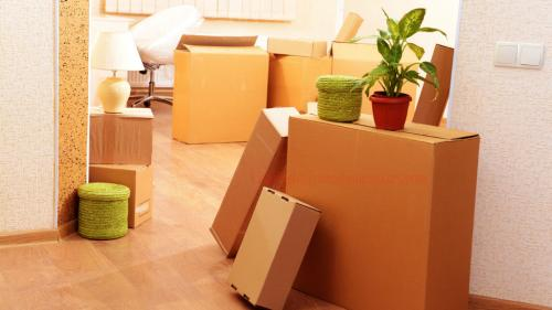 Relocation Services in Shimla | Best Packers and Movers Services-Services-Moving & Storage Services-Shimla