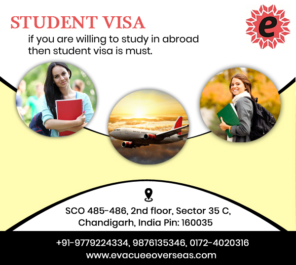 Immigration Consultants in Chandigarh-Classes-Other Classes-Chandigarh