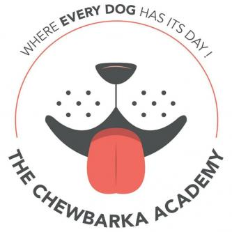Certified professional dog trainer-Pets-Dog Training-Pune