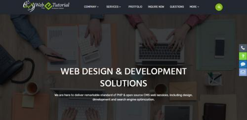 madxnow and webetutorial services-Services-Web Services-Jaipur