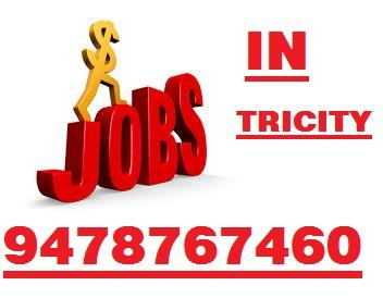 FRONT OFFICE JOBS FOR FRESHER 9115938899-Jobs-Administrative & Support-Chandigarh