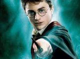 Download harry potter movies for free.-Community-Artists-Anand