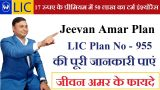 Buy LIC Jeevan Amar Policy 955 | Most Popular Term plan -Services-Insurance & Financial Services-Ni Dilli