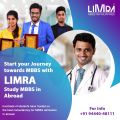 Limra Overseas Education | Study MBBS in Abroad-Classes-Other Classes-Chennai