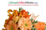 Celebrate Motherhood by sending fabulous Mother's Day Gifts-Services-Other Services-Chennai