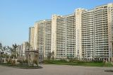 4 BHK Service Apartment for Rent in DLF the Magnolias-Homes-Residental-Rent-Gurgaon