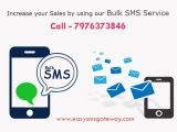 New Year Mega SMS Offer | 10% Off + Extra 5% Bulk SMS Credit-Services-Other Services-Jaipur