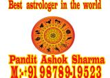best astrologer pandit ji-Services-Legal Services-Jalandhar