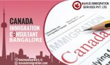 Immigration Consultants In Bangalore – Novusimmigration-Services-Legal Services-Bangalore