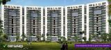 Tulip Violet Offers 3 BHK Apartments Gurgaon-Real Estate-For Sell-Flats for Sale-Gurgaon